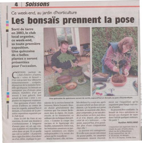 Article club bonsai