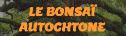 Le bonsai autochtone